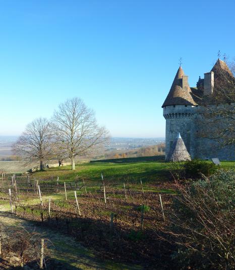 vu-coteau-du-chateau-de-monbazillac