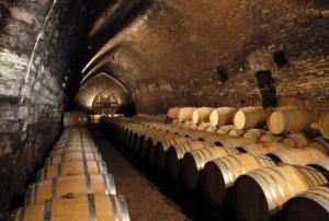 """Les vins sont élevés dans des fûts pendant plusieurs mois - on les appelle """"les pièces"""" en Bourgogne"""