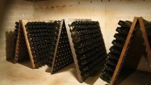 Les pupitres de remuage utilisés dans la méthode champenoise. Chaque jour, le vigneron tourne les bouteilles d'un quart de tour. Cette opération est aujourd'hui largement automatisée.